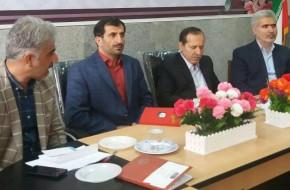 تشکیل کمیته مهارت و کارآفرینی در استان